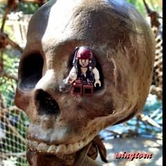 Pirate's Eye (wingtorn) Tags: skeleton jack skull lego pirates yo drinking cage booty sparrow johnny caribbean rum minifig ho depp socket potc wingtorn