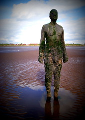 Another Place at Crosby Beach (chrisbell50000) Tags: shadow sculpture favorite man reflection men beach water modern naked nude penis sand iron place bare cock anthony another favourite knob sculptures pornographic gormley crosby merseyside undressed blundellsands chrisbellphotocom