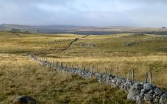 les grands espaces (2) (b.four) Tags: fence meadow clôture pré aubrac prati coth lozère nasbinals rubyphotographer coth5 mygearandme ruby10 ruby5 ruby15