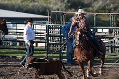 Tak_CPRA_2016-4819 (takahashi.blair) Tags: coachtak rodeo blairtakahashitakahashiblaircoachtakblairtakahashi pincher creek barrel racing bronc rope bareback steer bullriding