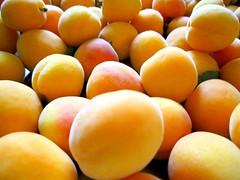 apricot (eli.selini) Tags: apricot summer