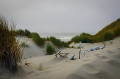 Dunes and Tide (Katrina Wright) Tags: dsc1800 dunes sanddunes sand florence or oregon landscape coastal scenic