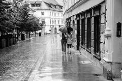 (Tom Plevnik) Tags: bnw blackandwhite candid city flickr human ljubljana monochrome nikon outdoor public people places photography rain street urban road alley sidewalk architecture streetphotography
