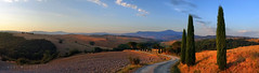 Italien landscape (Neal J.Wilson) Tags: panoramic tuscany cyprus trees roads gravel countryside fields farming goldenhour hills italy europe dawn dusk