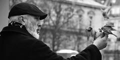 l'homme et l'oiseau (diana s. tsuchida) Tags: man blackwhite bw bird pidgeon portrait daily notre damme paris france glimpse vianello iuav