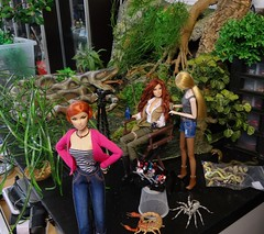 Behind the Scenes troubles (MiskatonicNick) Tags: behindthescenes diorama toyville anja regalsolstice giselle maisoui dolls doll playscale 16 sixthscale jungle integritytoys fashionroyalty