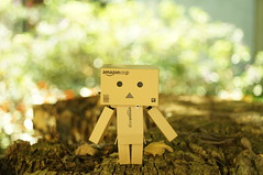 Please stay with me (wakakasui) Tags: nex 3n meyer 35mm f45 m42 danbo danbolove bokeh
