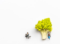 """Relaxing on a Sunday Morning.."" (Ian Johnston LRPS) Tags: tree little people swing onwhite seat models minimalist daylight nikon d800 85mm space sunday morning 2016 romanesco cauliflower veg kitchen tabletop"