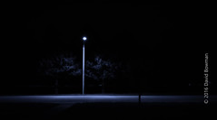 Forest Park after Loufest 2016 (A Creative Journey Photography) Tags: street forestpark stlouis nightscene streetlamp streetlight light darkness road lonely