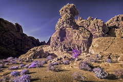 DSC_0015-EditzxzFAA (john.cote58) Tags: nevada rock stone formations valleyoffire nationalpark brush bush imagination outside outdoors desert mojave creation art design gallery infrared plants ir sky mountains