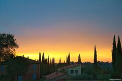 skyline tuscany (phacelias) Tags: cipressen cipressi cypresses bomen trees alberi sunset zonsondergang tramonto oranje orange arancione