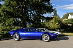 De Tomaso Pantera's (SupercarLust) Tags: detomaso pantera supercar classic nelson britishcolumbia