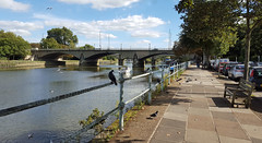 Twickenham Bridge (Barry C. Austin) Tags: richmondlock riverthames