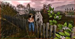 #76 - Wild Horses (Lucianna Emerald) Tags: hhhucci akouly catwa chs cosmeticfair cuqui encore free gatcha ikon izzies letre maitreya marketplace mg riders sintiklia theblackdotproject