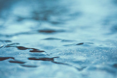 Stuck In The Rain (Adam_Marshall) Tags: autumn blue minimalism macro adam marshall nature water stereocolours outdoors shallowdof sawtry rain abstract texture adammarshall river stream waterfall cold wet storm soft surreal canon eos70d 60mmf28