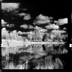 Calling it a Day (Calakmul) Tags: bw lake 120 6x6 tlr film clouds forest ir filter alberta infrared wilderness yashica boreal hoya twinlensreflex yashicamat124g efke rm72 hoya72filter aurair820
