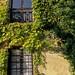 Pueblos bonitos Asturias: Ceceda