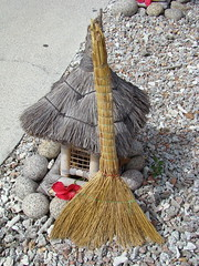 Escombra tpica seychellois - La Digue - Seychelles (montse & ferran travelers) Tags: seychelles typical broom escoba digue escombra