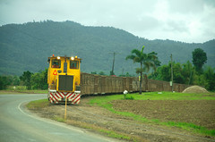 sugar train (rideritaliano) Tags: train nikon oz transport australia campagne vr sucre australie canne 17105 d7000