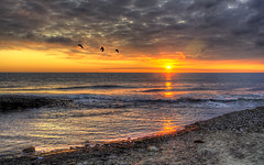 On The Wing (Osgoldcross Photography) Tags: morning sea sun sunlight seascape beach birds clouds sunrise landscape rising dawn early flying sand nikon raw waves tide horizon shingle wave pebbles northsea dawning sunrays hdr meridian earlybird handheldhdr nikond5100