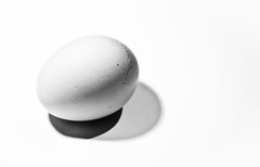 Eggy the egg. (Bring Me The Honeybread.) Tags: egg minimalism odc2 ourdailychallenge