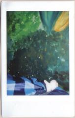 05.10.12 Sleeping in the jungle (Wang Wang 22) Tags: dog cute analog bed bett sleep pug plush hund jungle 365 pictureoftheday schlaf d90 instaxmini fotodestages wangwang wangwang22
