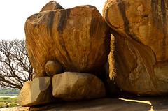 Hampi019 (Pappadi) Tags: india river temple nikon ruins capital ruin boulder boulders historical karnataka chariot pampa hampi vijayanagar chalukya hospet virupaksha zenana lotusmahal tungabhadra lakshminarasimha sisterstones virupakshatemple vittalatemple stonechariot elephantstables anegundi indoislamicarchitecture kishkinda krishnapura ugranarasimha d5100 hindukingdom balakrishnatemple malpangudi vijavittalatemple sangamadynasty flickr:user=pappadi hhampi image:content=hampi image:subject=architecture image:location=hampi image:subject=indianarchitecture