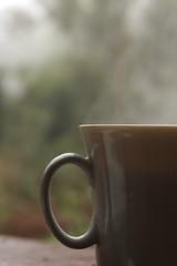 IMG_5763 (Gabriel Ramos de Lima) Tags: coffee morning nature cup caf manh natureza caneca