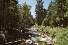 CA-CO (42 of 60) (codywellons) Tags: sequoia national park california nature kings canyon river a7ii