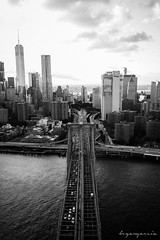 IMG_3953-2 (bjkeed255) Tags: nyc manhattan helicopter aerialphotography freedomtower empirestate bw brooklynbridge blackandwhite