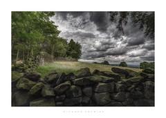 Shining Cliff Woods, Ambergate (RichardK2010) Tags: landscape wideangle effinoldageissht ambergate shiningcliffwoods derbyshire nikond7100 photohopexpress