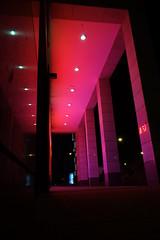 Red illuminated (Pascal Volk) Tags: berlin althohenschnhausen berlinlichtenberg weisenseerweg konradwolfstrase nacht night rot red licht light spiegelung reflexion architektur architecture blue blau violet violett sonydscrx100
