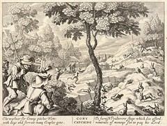 Cony catching. Etching by Wenceslas Hollar (1607-1677) (Swallowtail Garden Seeds) Tags: art monochrome engrave engraving narcissus fauna flora drawing sketch rabbits coney connie hunting hunters hounds