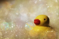 bubblicious (s@ssyl@ssy) Tags: hmm macromondays thefirstletterofmyname rubber duck duckie yellow bubbles bokeh ducky rubberduckyyouretheone youmakebathtimesomuchfun tiny macro eraser