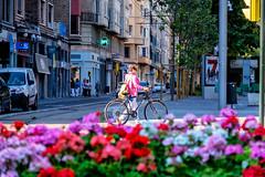 _DSF8547 (ad_n61) Tags: fujifilm xt1 fujinon super ebc xf 18135mm 13556 ois wr zapato rojo red gente calle zaragoza spain espaa flor flower flores flowers