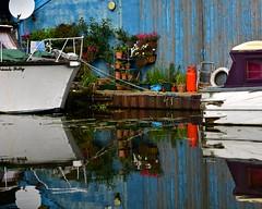 Secret Garden (violetchicken977) Tags: houseboat reflections ssyn smallgardens grunge