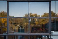 Foursquare (Ian Stoll) Tags: window glass urban reflection trees blur bokeh