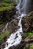 DSC_9098 (Sivaraj Mathi) Tags: nikon himalaya hemkund valleyofflowers vof nikond5000 himayam