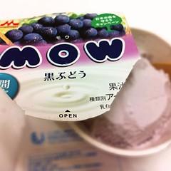 MOW ���֤ɤ�