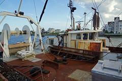 2012-08-04 08-10 Cape May 102 Harbor