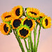 The Sunflowers of Summer