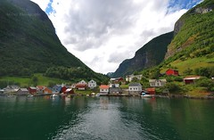 A fjord village [Getty images] (Mrscurlyhead) Tags: trees houses mountain green nature water norway cheese landscape boats scenery village sony goats valley fjord smallvillage sognogfjordane nryfjorden aurlandsfjorden fjordcruise undredal sonydslra300