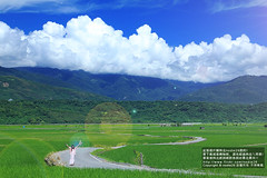 193 (nodie26) Tags:  193 193      paddy rice field farm sky  taiwan