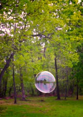 Bubble Bud (The Shared Experience) Tags: trees summer usa green leaves landscape outdoors nj bubble 2012 d800