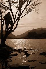 Upward.  Over the mountain (Lulabell*) Tags: lake mountains water silhouette sepia wales cymru slate llanberis gwynedd llyn llynpadarn lakepadarn