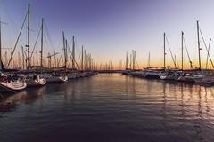 Sunset at the marina (Gabriella Hal) Tags: sunset marina landscape boats panoramafotográfico