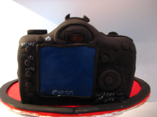 Back view of Canon DSLR