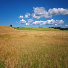 Autumn Fields (Krogen) Tags: autumn nature norway landscape norge natur norwegen olympus scandinavia akershus høst romerike krogen landskap noreg skandinavia nannestad