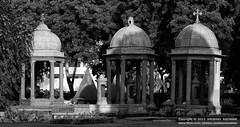 Roman Catholic Cementry (Anubhav Kochhar) Tags: x5 flickraward flickrtravelaward photography soloindiantraveller anubhav kochhar anubhavkochhar airingbyway canon eos