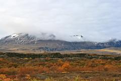 Þingvellir (skolavellir12) Tags: autumn red island iceland haust thingvellir þingvellir magnús haustlitir haustmynd